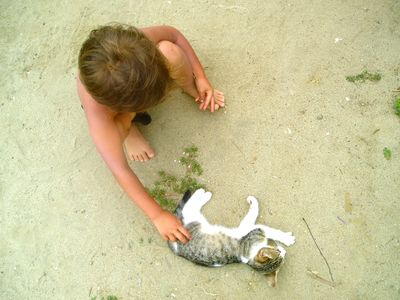 Playing with a street cat in Canoa, Ecuador